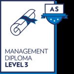 Management Level 3 Graphic