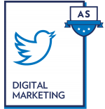 Digital Marketing Apprenticeship
